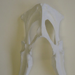 JONATHAN MEYER, Mask, 2007